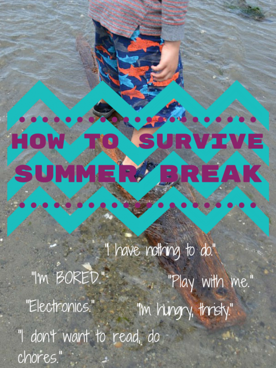 How to survive summer break with your kids at home!!