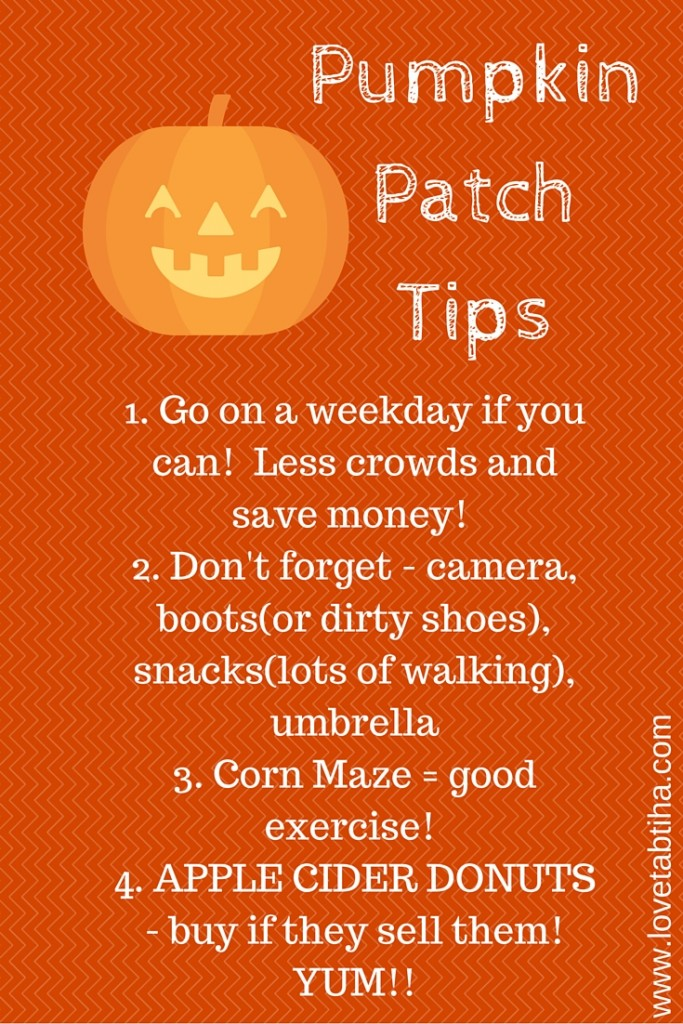 pumpkin patch tips
