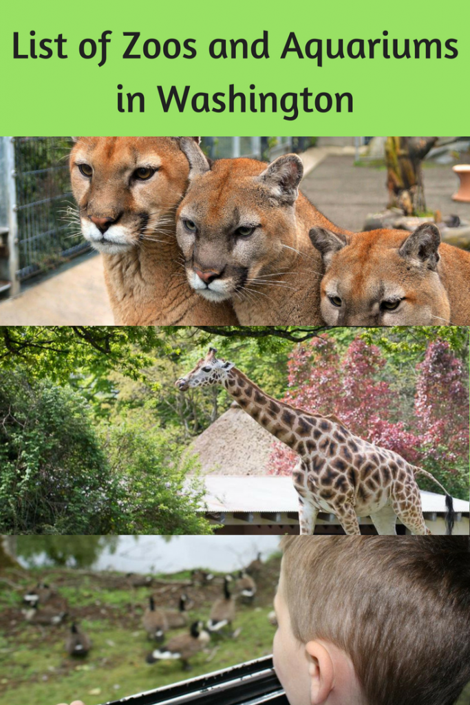 Here's a list of Zoos and Aquariums in Washington